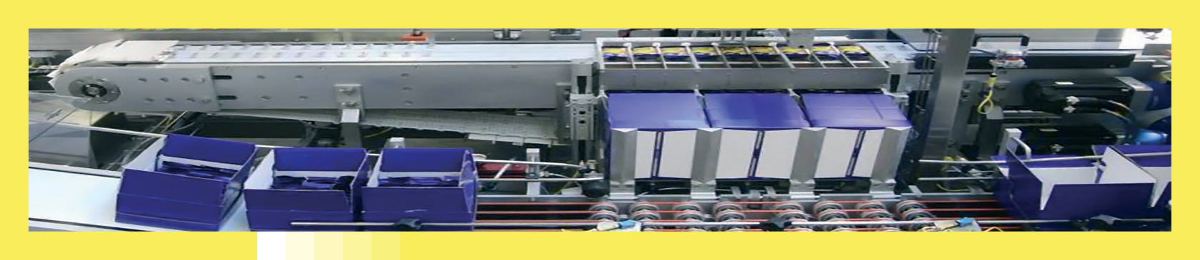 Robotic Case Packer